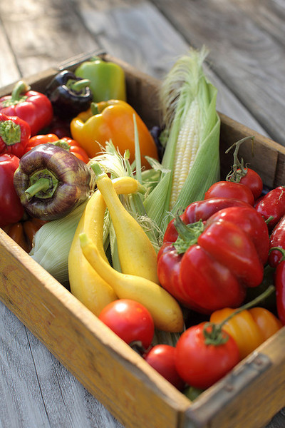 Permaculture & Gardening Classes Organic Vegetable Gardening with Donna Livermore (Two days) by CERES