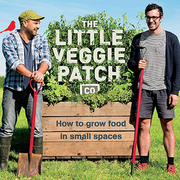 Edible Gardening Workshop by The Little Veggie Patch Co