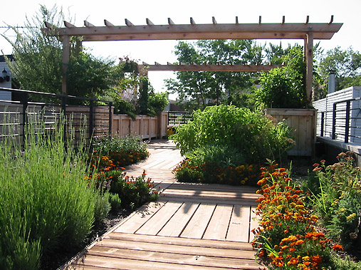 Permaculture & Gardening Classes Garden Design - Designing your Edible Oasis with Donna Livermore by CERES