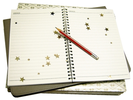Kids Activities The Writer's Club: Write for Life! by Write Away With Me